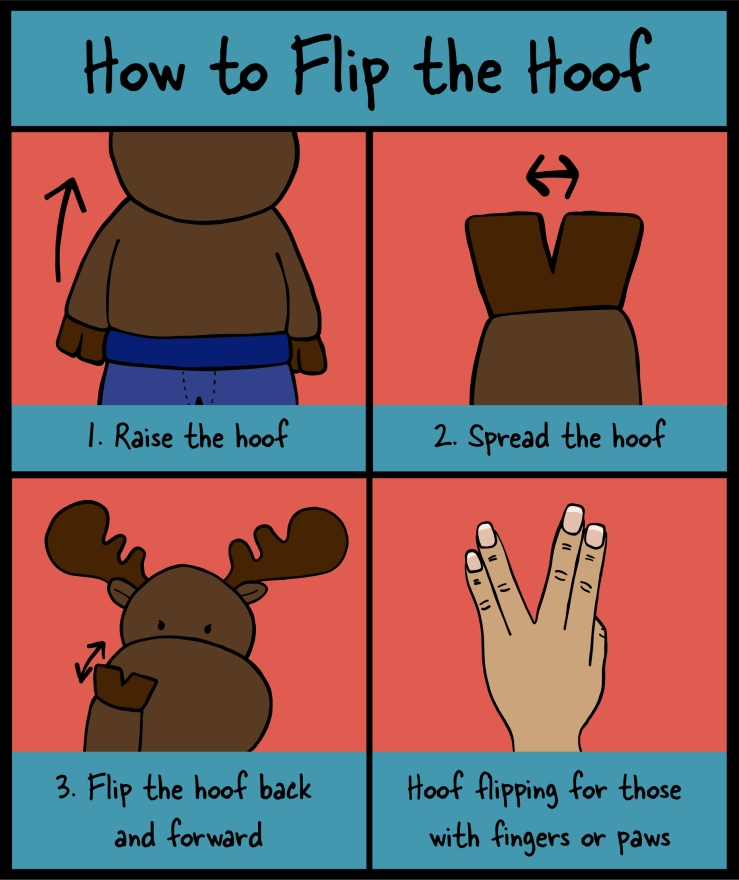 How to flip the hoof